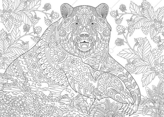 grizzly bear coloring pages animal coloring book pages for adults instant download print