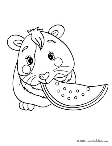 guinea pig coloring pages hellokids