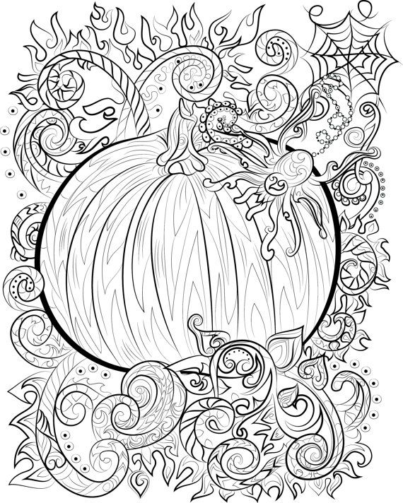 halloween pumpkin and spider adult colouring page instant