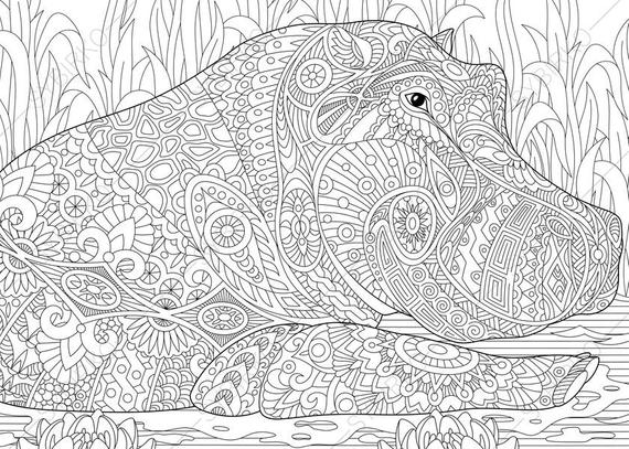hippo hippopotamus 2 coloring pages animal coloring book pages for adults instant download print
