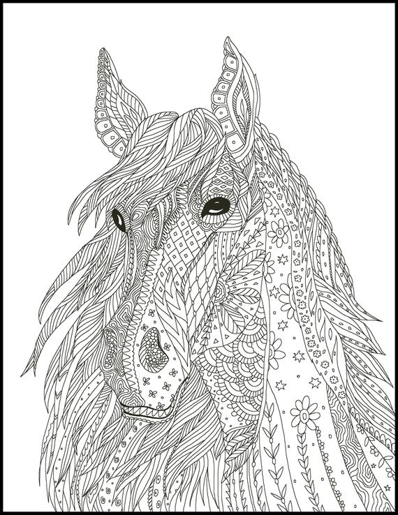 horse coloring page for adults horse adult coloring page printable coloring page horse lover coloring page gift animal coloring page