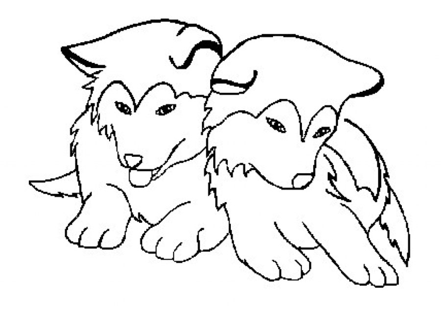 husky puppy coloring pages