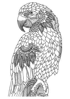 illustration keiti free printable coloring page