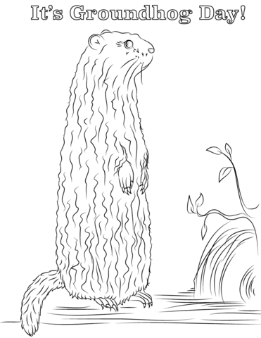 its groundhog day coloring page free printable coloring