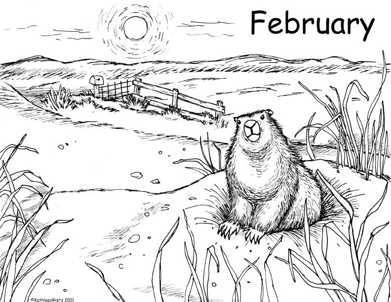 Groundhog Day Coloring Pages Gallery Whitesbelfast