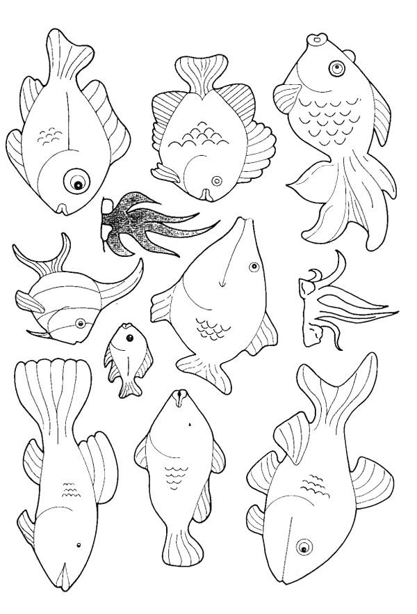 kids n fun coloring page fish fish