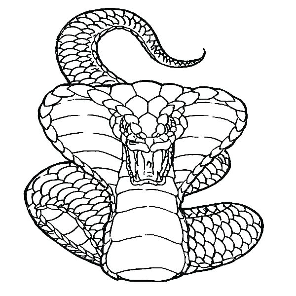 lego ninjago rise of the snakes coloring pages rutuesday