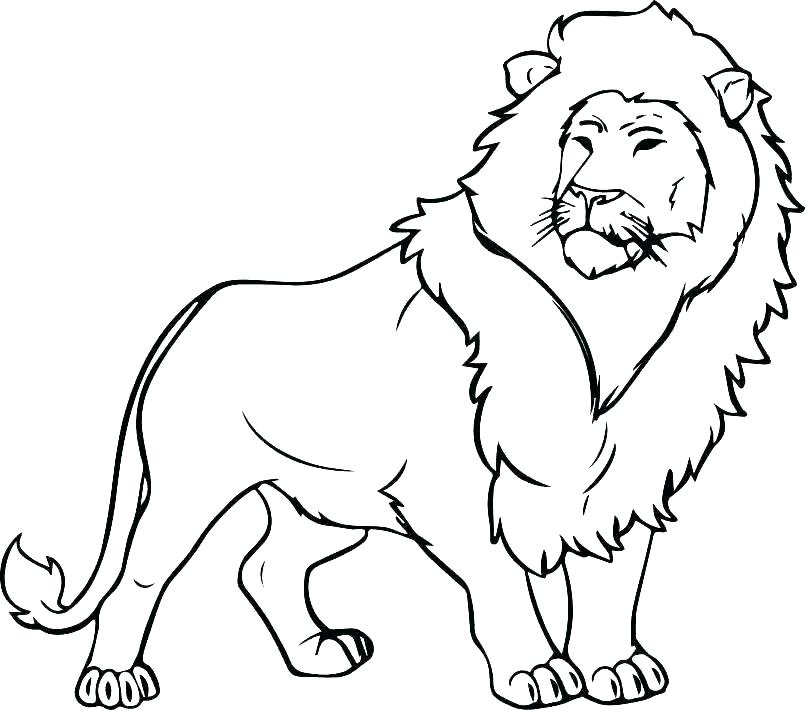 lion coloring pages for adults 2oclock