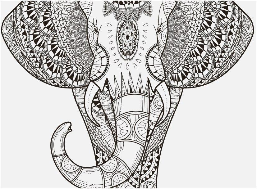 mandala animal coloring pages image animal mandala coloring