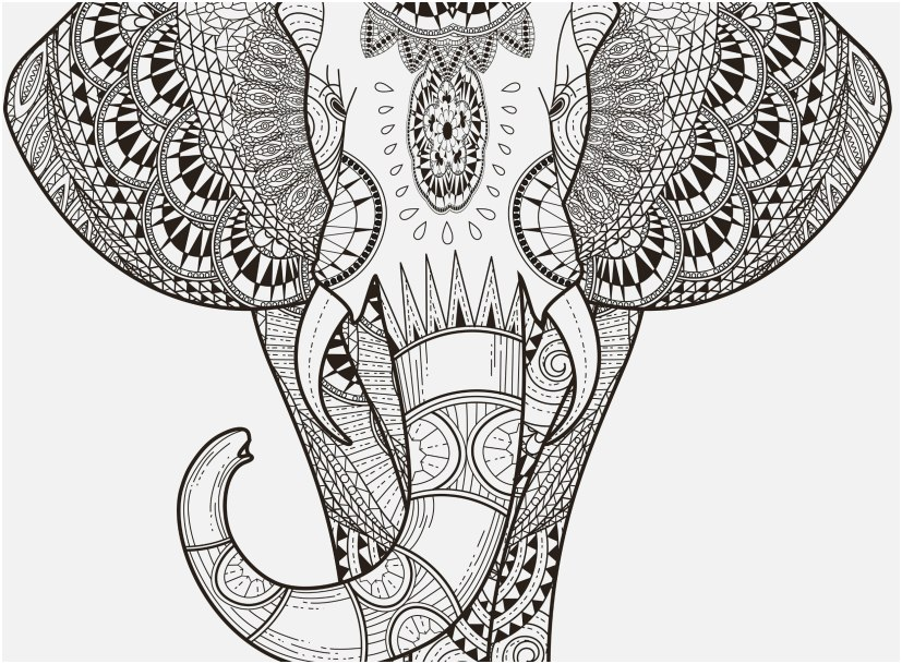 mandala animal coloring pages image animal mandala coloring