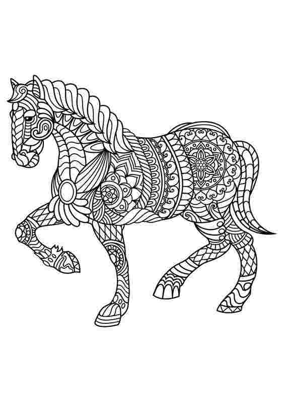 mandala coloring pages horse coloring pages horse mandala