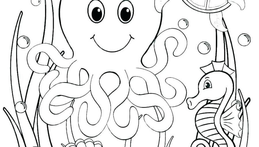 marine life coloring pages ocean preschool medium size of