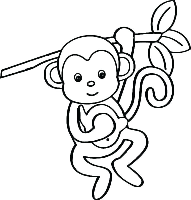 monkey coloring images monkey color page squirrel monkey