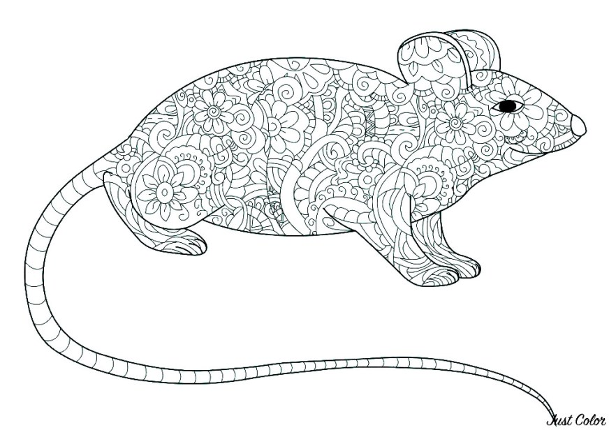 mouse to color for kids mouse kids coloring pages