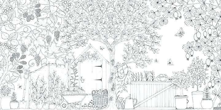nature coloring pages for adults free online and kids in