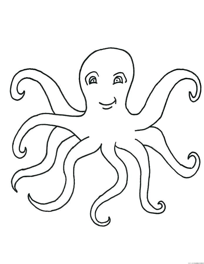 octopus coloring template schoogle