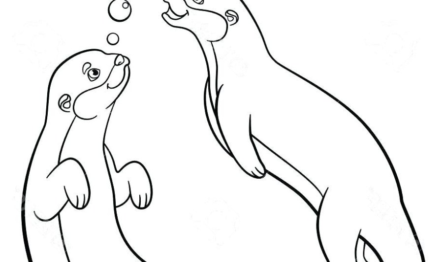otter coloring pages uwcoalition