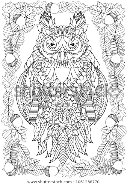 owl coloring page adults stock vector royalty free 1061238770
