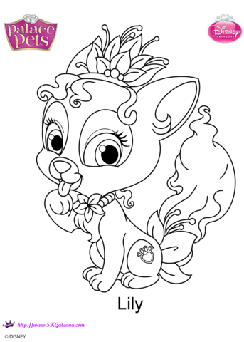palace pets lily coloring page free printable coloring pages