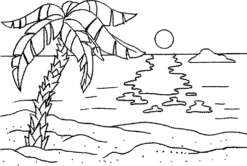 palm tree 32 nature printable coloring pages