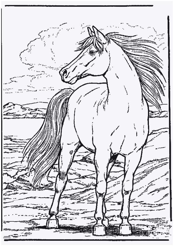 pferde ausmalbilder schn pferde ausmalbilder unique 42