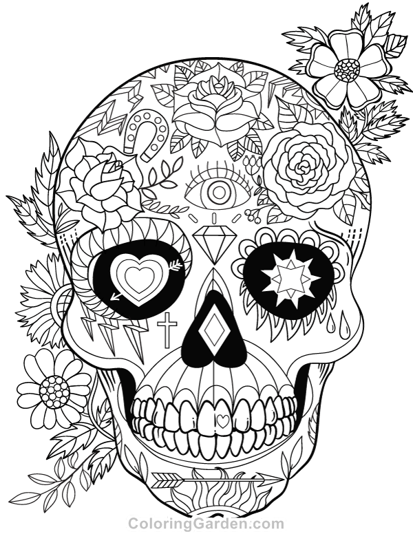 pin alison roberts on adult colouring skull coloring