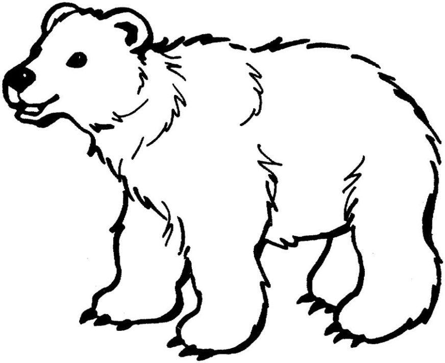 polar bear coloring pages printable polar bear coloring