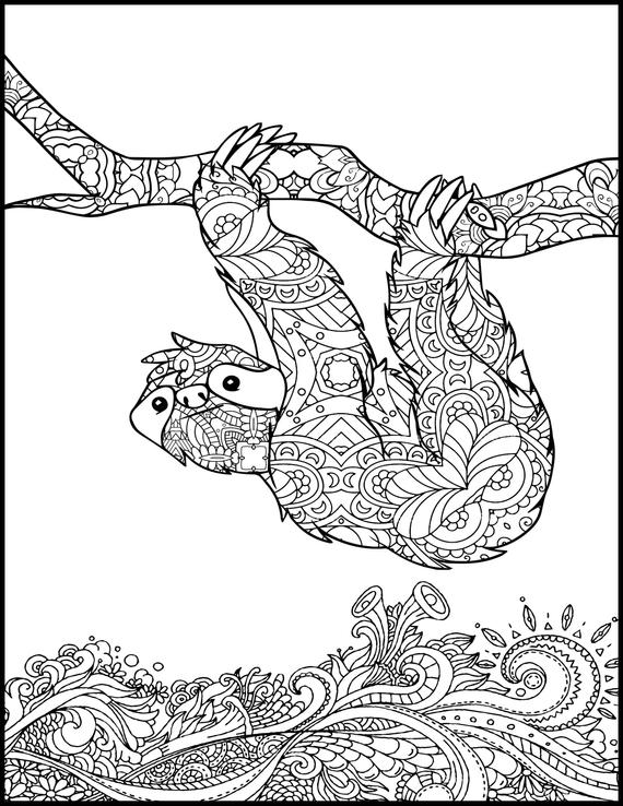 printable coloring page adult coloring page animal coloring page for adults coloring pages for adults sloth
