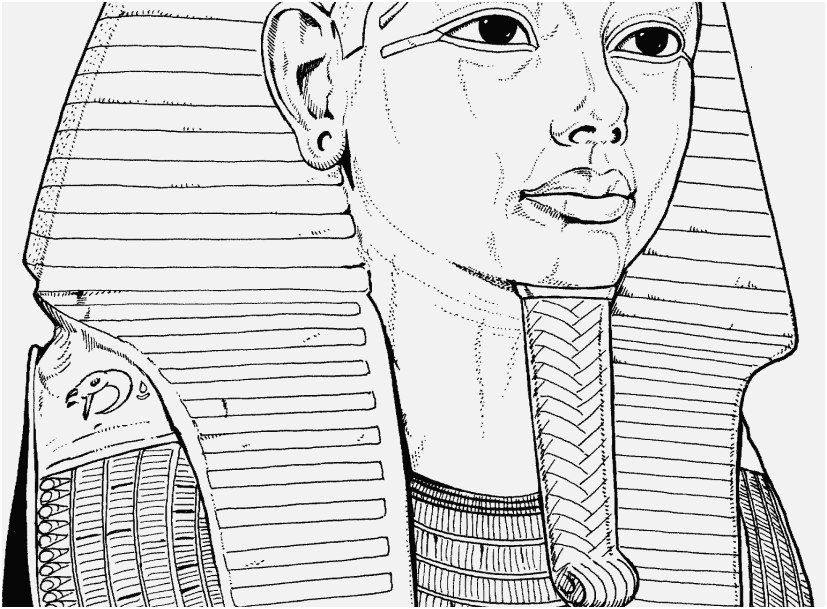 printable coloring pages for adults image egyptian coloring