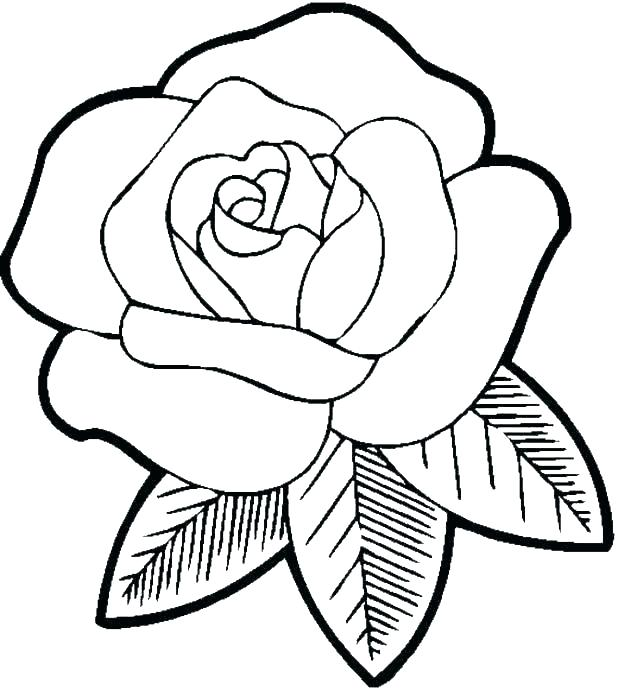 Free Coloring Pages Flowers Ideas Whitesbelfast
