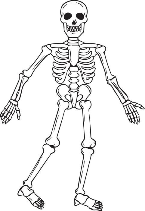 printable skeleton coloring page for kids halloween