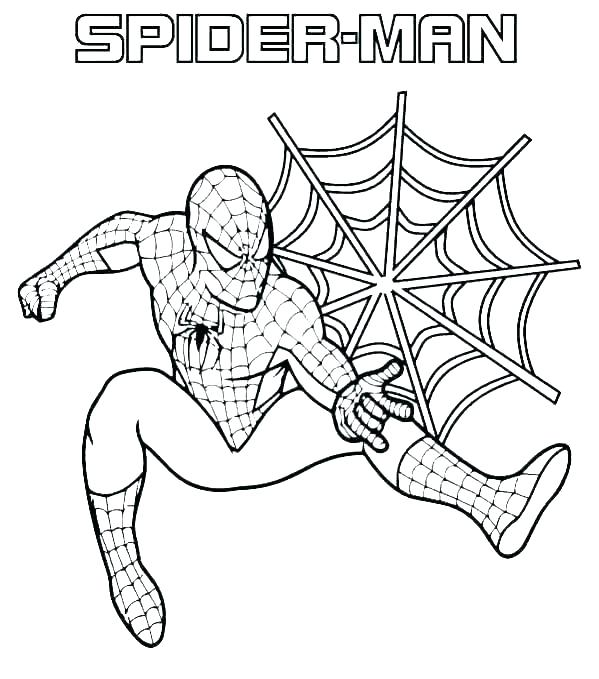 printable spider coloring pages asrahousing