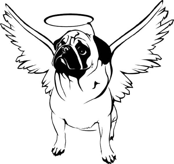 pug coloring pages dog line drawing animal coloring pages