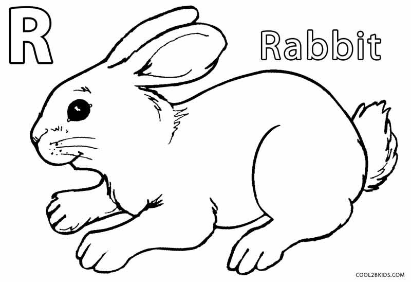 rabbit coloring pages uwcoalition