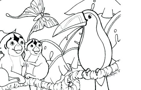 rainforest coloring pages at getdrawings free for