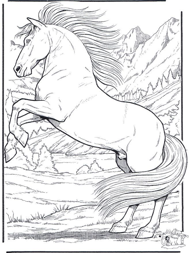 realistic animal coloring pages horse coloring pages