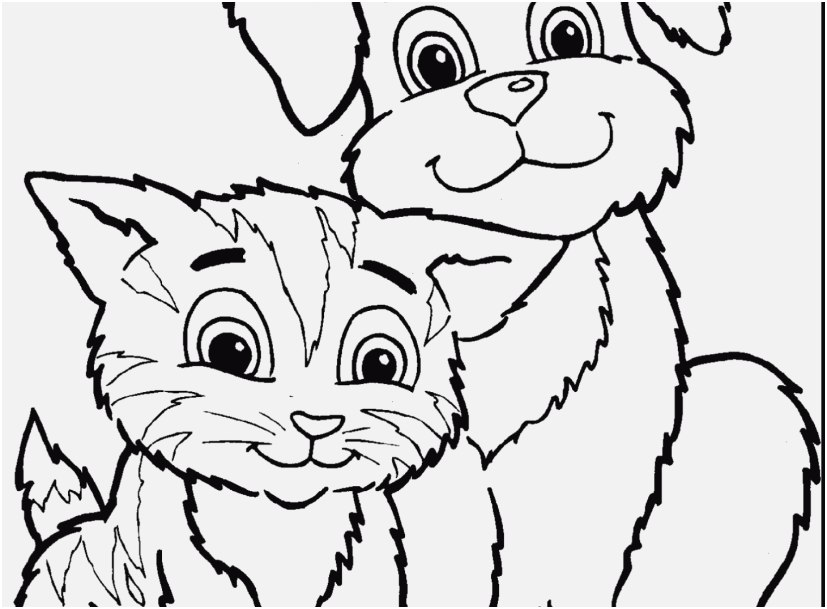 realistic cat coloring pages images cats and dogs coloring