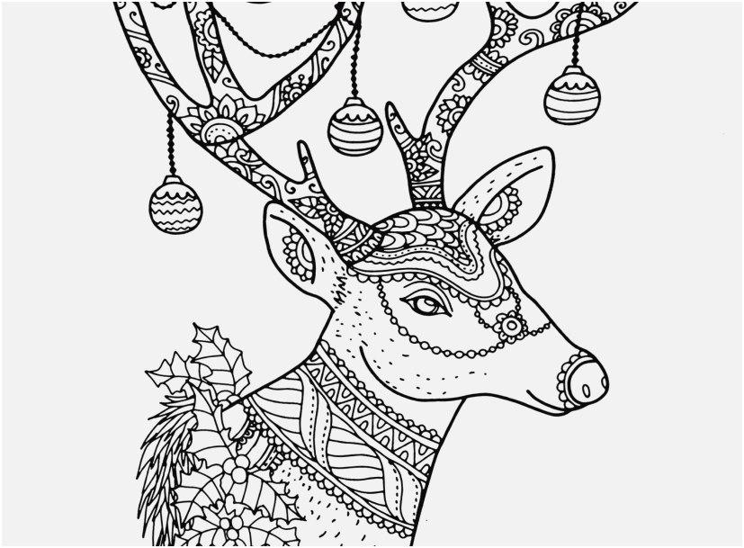 reindeer coloring pages footage free christmas reindeer