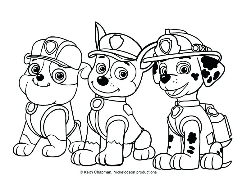 rocky paw patrol coloring page at getdrawings free for