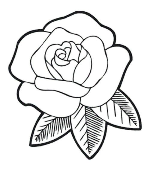 rose coloring pages download cute roses coloring page or