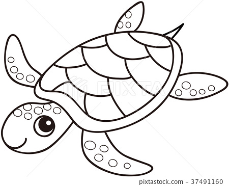 sea turtle coloring page stock illustration 37491160 pixta