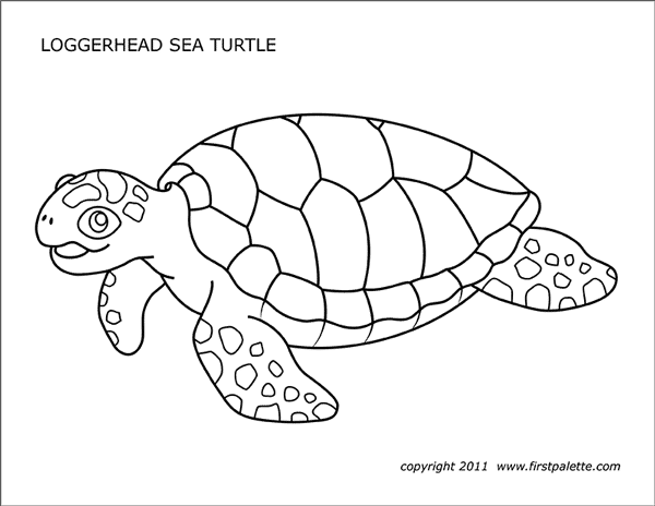 sea turtles free printable templates coloring pages