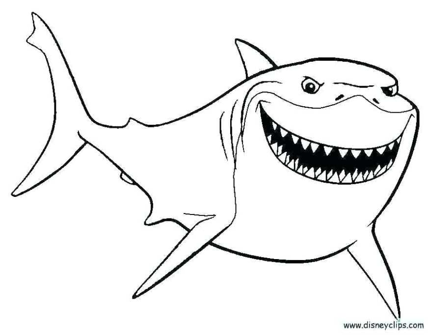 shark coloring pages printable colouring great white