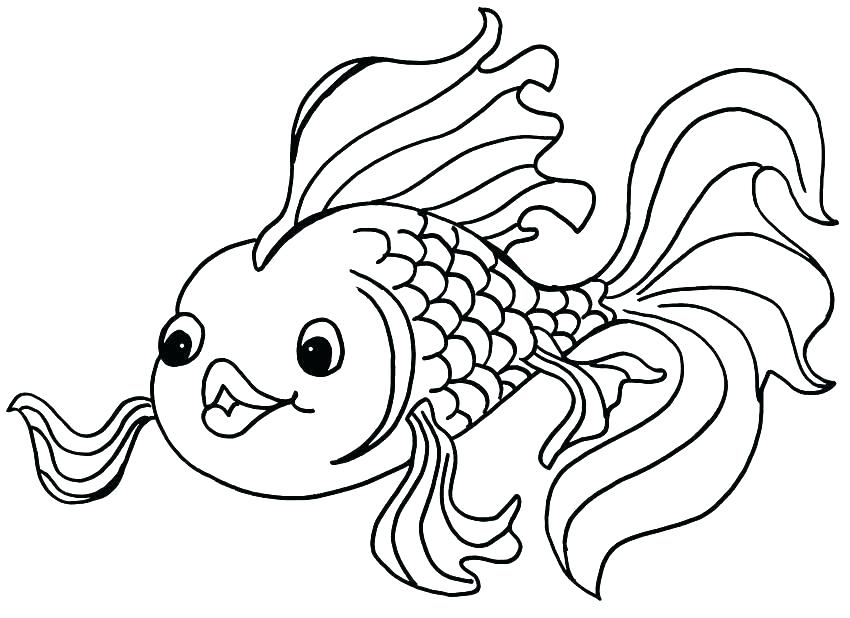 simple fish coloring pages at getdrawings free for