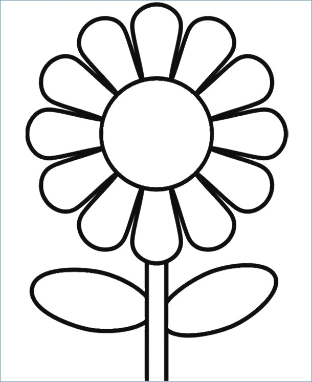 - Spring Flower Coloring Pages Ideas - Whitesbelfast