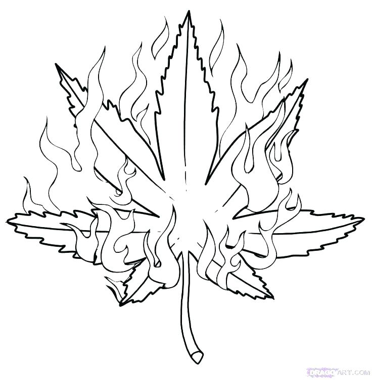 stoner coloring pages dope stoner tumblr coloring pages