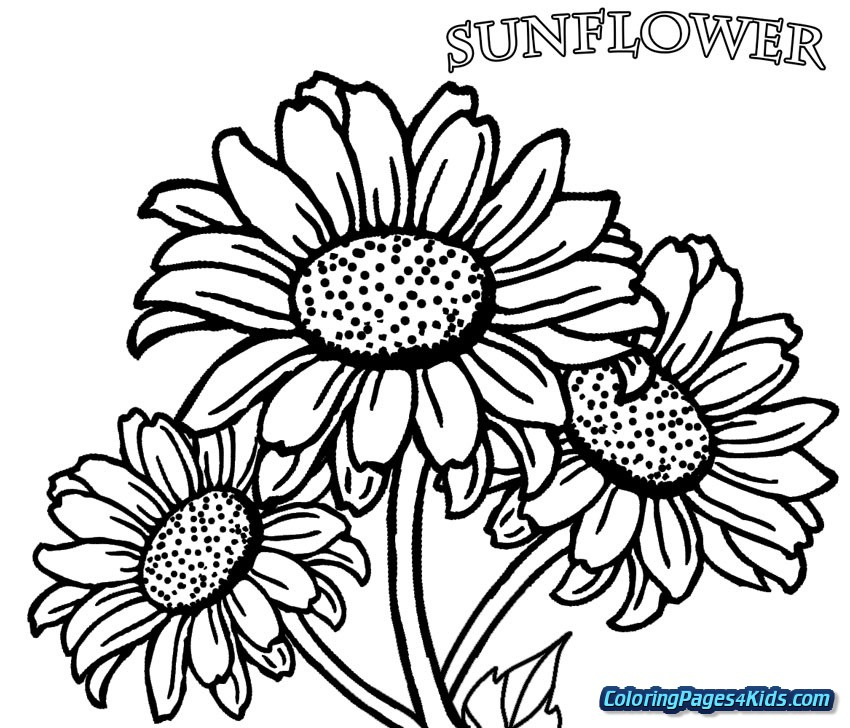 sunny the sunflower coloring page free printable coloring
