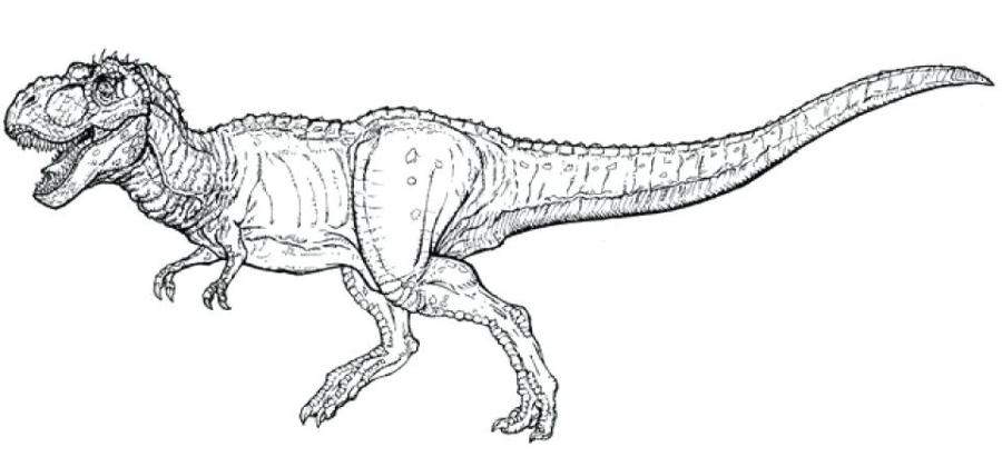 t rex coloring pages likeupco