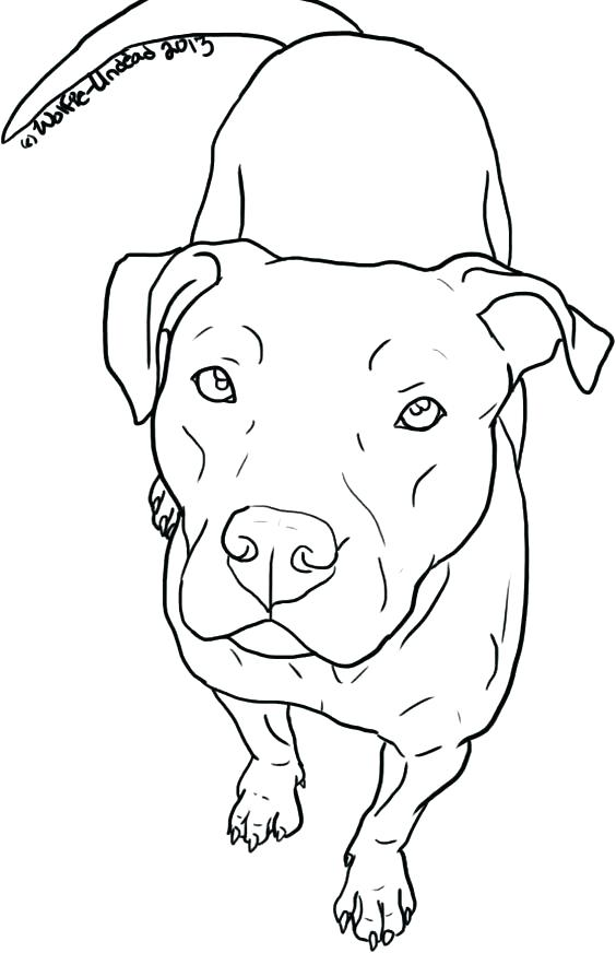 the best free pit coloring page images download from 121