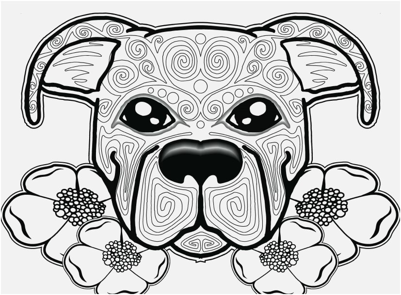 the perfect picture dog coloring pages very good yonjamedia